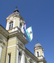 Pozega120906_zastave