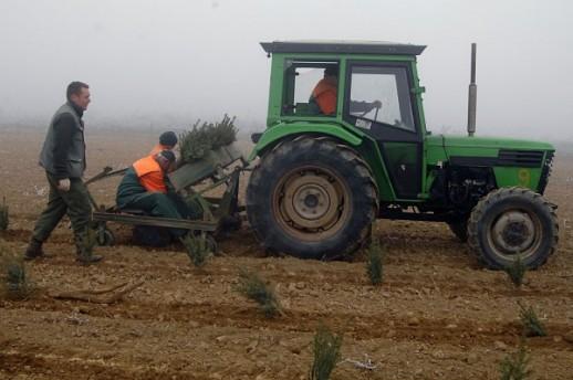 traktor_uzs_nl300517