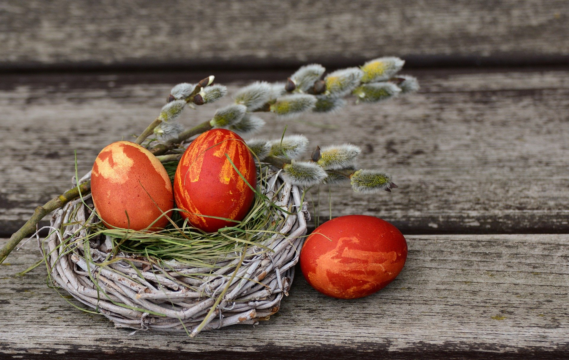 Sretan Uskrs želi Vam SDLSN!
