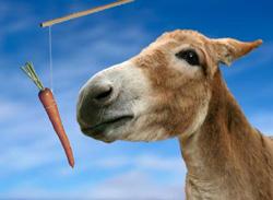 Znaju li u Ministarstvu financija da se mrkva i štap ne mogu primjenjivati istovremeno jer se magarac može zbuniti?